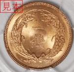 coin078